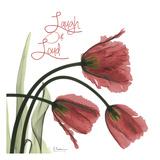 Laugh Out Loud Tulips L83