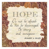 Hope ver 2