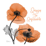 Imagine Iceland Poppy