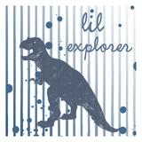 Lil Explorer