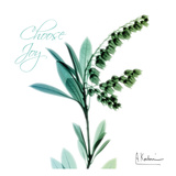 Choose Joy Lily of The Valley H12