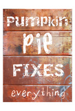 Pumpkin Pie Fixes Everything