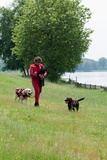 Instructors Work with Dogs Trained for Rescue at Sea Near a Lake Near Milan  Italy