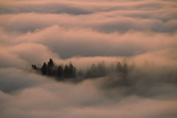 Islands of Trees Peaking Out of Thick Layer of Clouds in the Valley