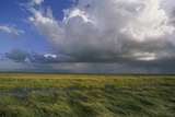 Clouds with Rain Shower in the Salt Marsh Landscape