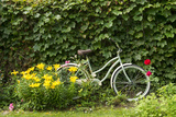 A Bicycle in a Beautiful Garden