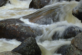 Fall River Rapids in Rocky Mountain National Park  Colorado