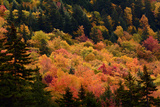 Scenic View from the Kancamagus Highway in the White Mountains of New Hampshire