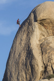 A Climber Repelling Down a Rock Face in Joshua Tree National Park's Hidden Valley