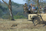 Tourists Encounter a Leopard in South Africa's Sabi Sand Game Reserve
