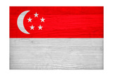 Singapore Flag Design with Wood Patterning - Flags of the World Series