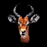 Low Poly Safari Art - The Look of Antelope - Black Edition