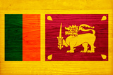 Sri Lanka Flag Design with Wood Patterning - Flags of the World Series