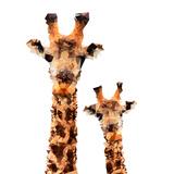 Low Poly Safari Art - Giraffes - White Edition