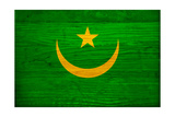 Mauritania Flag Design with Wood Patterning - Flags of the World Series