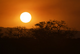 Sunset in South Africa's Sabi Sand Game Reserve
