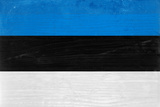 Estonia Flag Design with Wood Patterning - Flags of the World Series