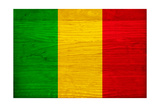 Mali Flag Design with Wood Patterning - Flags of the World Series