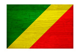 Republic of The Congo Flag Design with Wood Patterning - Flags of the World Series