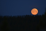 A Full Moon over Yellowstone National Park