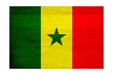 Senegal Flag Design with Wood Patterning - Flags of the World Series