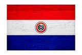 Paraguay Flag Design with Wood Patterning - Flags of the World Series