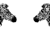 Low Poly Safari Art - Zebras - White Edition