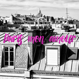 Paris Fashion Series - Paris mon amour - View of Roofs II