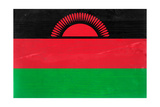 Malawi Flag Design with Wood Patterning - Flags of the World Series