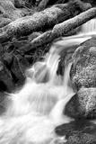 Trailside Waterfall III BW