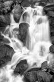 Trailside Waterfall IV BW