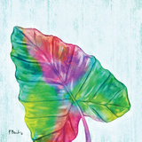Prism Palm III