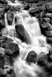 Trailside Waterfall I BW