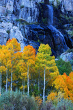 Autumn and Fall Color Waterfall Bishop Creek Canyon Eastern Sierras California