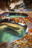 Within The Subway  Planet Earth Zion National Park  Utah