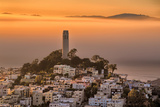 Coit Tower and Golden Fog Flow  San Francisco  Cityscape  Urban View