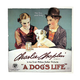 A Dogs Life  1918