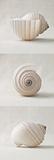 Seashell Trio II