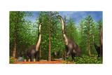 Group of Brachiosaurus Dinosaurs Grazing on Tree Tops