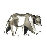 Watercolor Woodland IV Reproduction d'art par Grace Popp