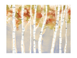 Swaying Birches II