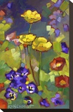 Poppies and Pansies