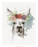 Llama Flora II