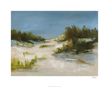 Summer Dunes I