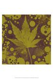 Botany Expressions II