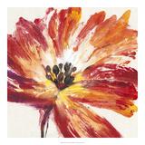 Fleur Rouge I