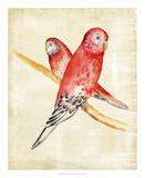 Fanciful Birds I