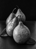Black and White Image of 4 Pears