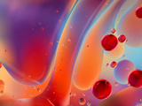 Beautiful Abstract Colorful Background  Oil on Water Surface