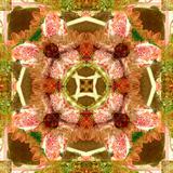 A Floral Mandala Montage